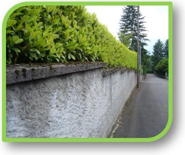 Arqa association regie quartiers aix les bains for Association entretien espaces verts